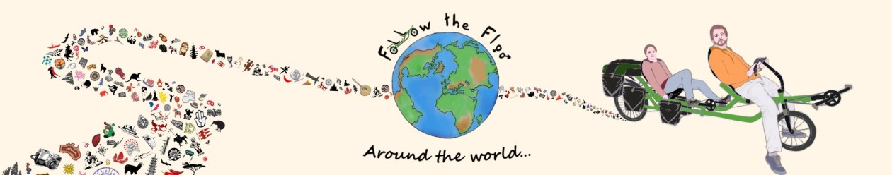 Follow the Floo